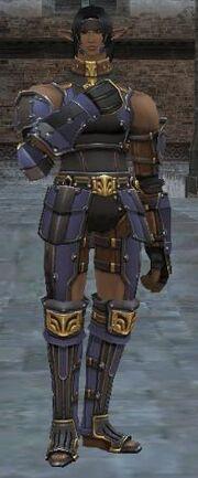 Warrior's Armor +1 Set