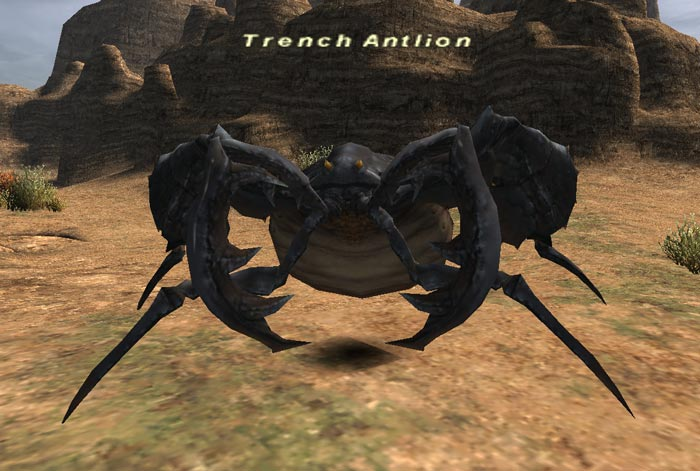 Trench Antlion