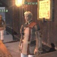 Catus.jpg