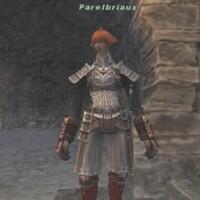 Parelbriaux