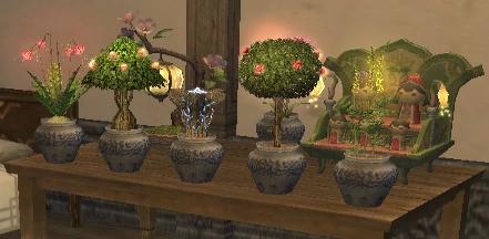 Garden display.png