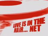 Love is in the Hair...Net