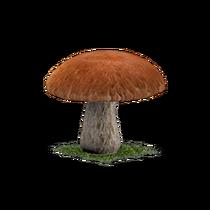 Mushroom Block.png