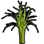 Small Grass.png
