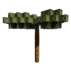Palm Seed.png