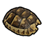 Tortoise Shell.png