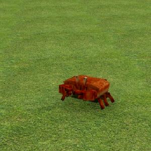Small Crab.png