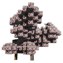 Cherry Blossom Tree.png