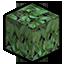 Meranti Leaf.png