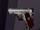 Model Gun