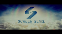 Screen Gems Pictures (Don't Breathe)