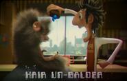 Hair Un-Balder