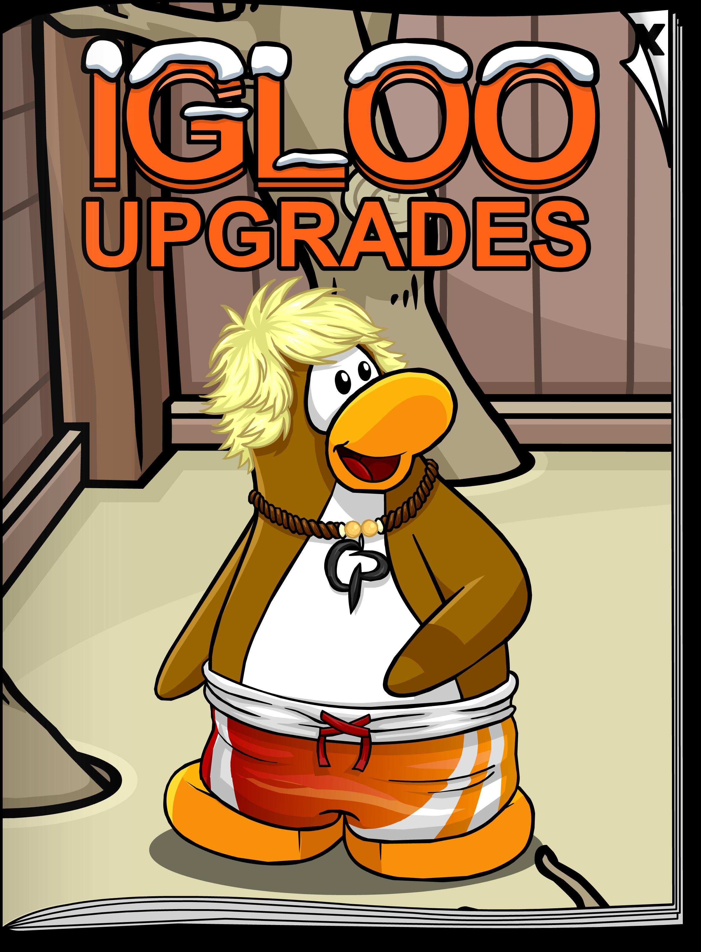 Igloo Upgrades Aug'19