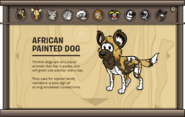 Endangered Animals African Painted Dog
