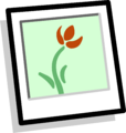 Flower Background Icon