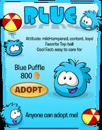Blue Puffle Adopt Catalog