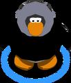 Black Parka IG