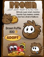 Brown Puffle Adopt Catalog
