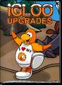 Igloo Upgrades Feb 20