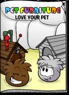 Pet Furniture May 19