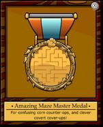Mission 11 Medal full award