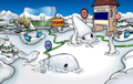 Water Party 2020 Snow Forts