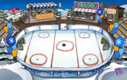 Winter Party Ice Rink