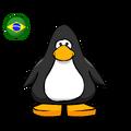 Brazil Flag PC