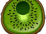 Kiwi Costume