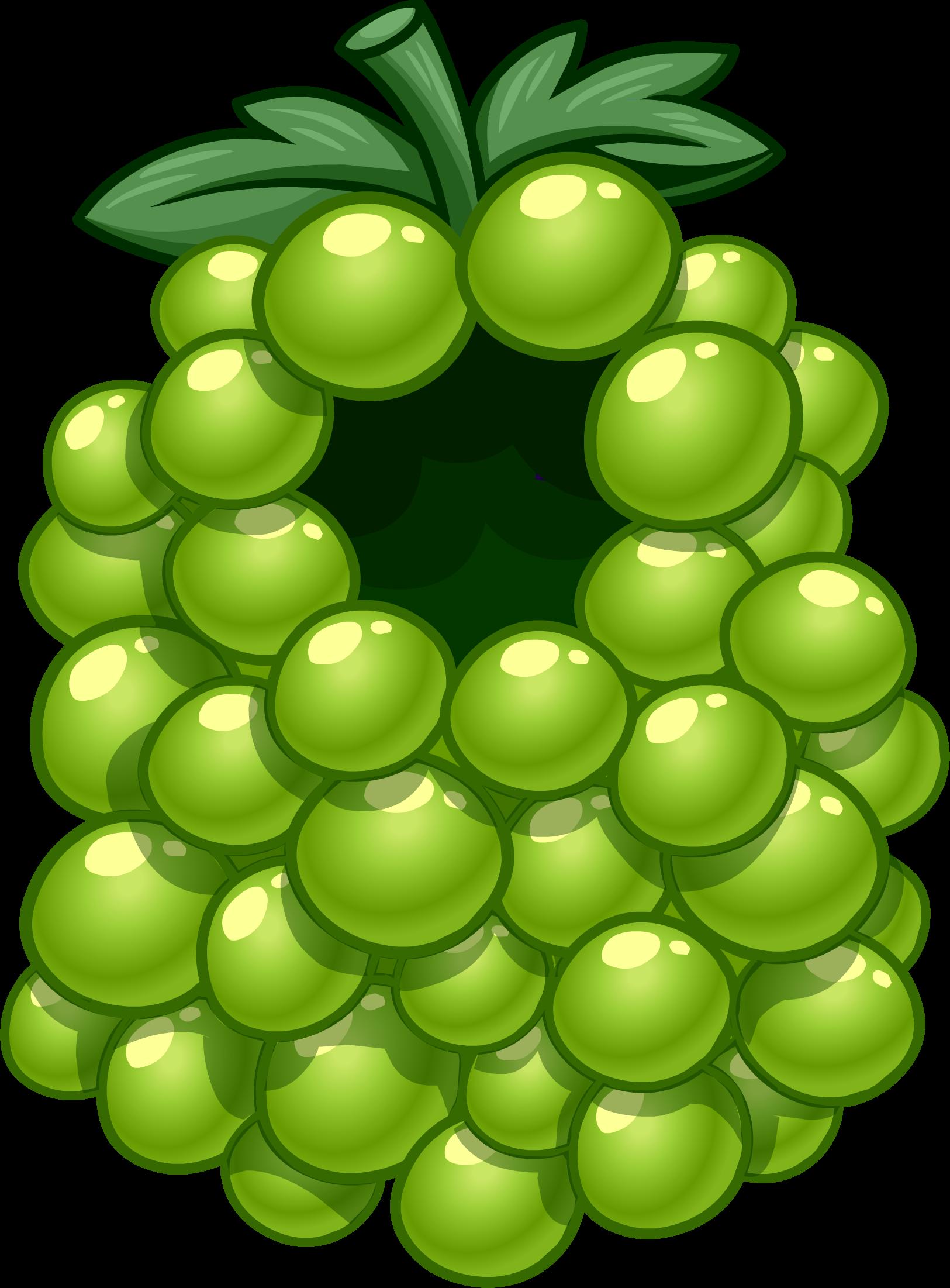 Green Grape Costume
