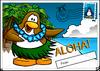 Aloha Postcard.png