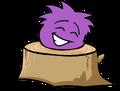 Purple puffle trunk