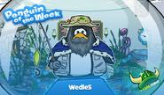 Wedle5