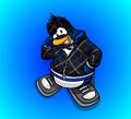 Penguin Custom 2