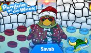 Savab
