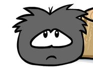 Hungryblackpuffle