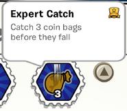 Expert Catch SB
