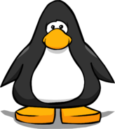 Black PC