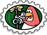 Snapshot Stamp