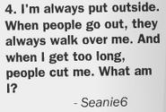 Seanie6 Newspaper