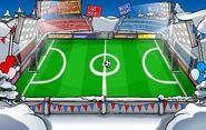 Penguin Games Soccer Pitch