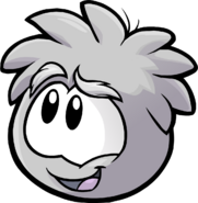 Grey Puffle Love Your Pet