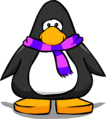 Pink and Purple Scarf PC