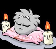 Grey Puffle Sleeping