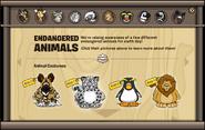 Endangered Animals Catalog