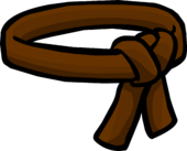 Brown Ninja Belt icon