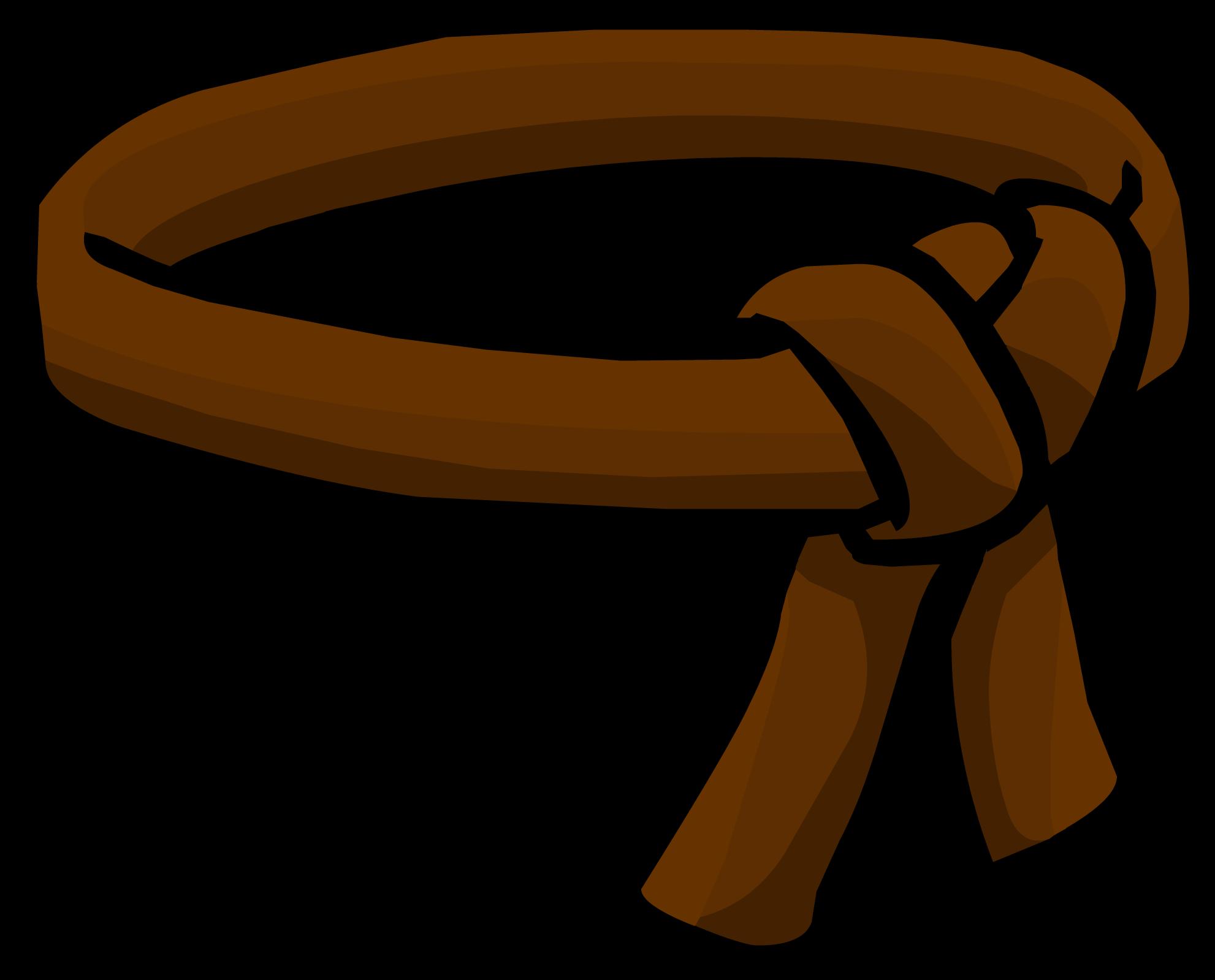 Brown Ninja Belt