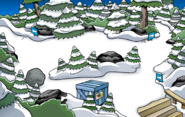 Puffle Party 2020 construction Forest