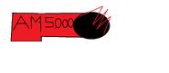 Am3000