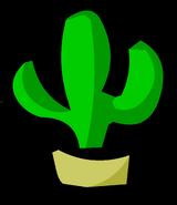 CactusPinGary'sRoom